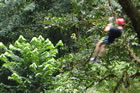 <em>Optional Canopy Zipline Adventure Guanacaste</em>